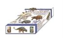 Image for Discover Dinosaurs - Educational Box Set