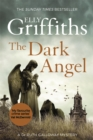 Image for The dark angel