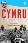 Image for Stori Sydyn: Cymru a'r Rhyfel Byd Cyntaf