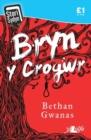 Image for Stori Sydyn: Bryn y Crogwr