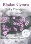 Image for Blodau Cymru  : cyflwyno byd y planhigion