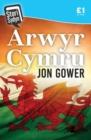 Image for Stori Sydyn: Arwyr Cymru