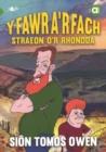 Image for Y fawr a'r fach  : straeon o'r Rhondda