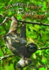 Image for Amazing animals of the rainforest