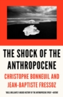 Image for The shock of the Anthropocene  : the Earth, history, and us
