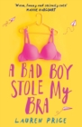 Image for A bad boy stole my bra