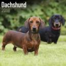 Image for Dachshund Calendar 2018