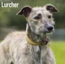 Image for Lurcher Calendar 2018