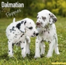 Image for Dalmatian Puppies Calendar 2018