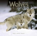 Image for Wolves Calendar 2018