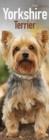 Image for Yorkshire Terrier Slim Calendar 2018