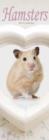 Image for Hamsters Slim Calendar 2018