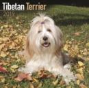 Image for Tibetan Terrier Calendar 2019