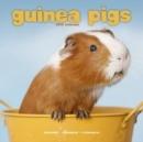 Image for Guinea Pigs Calendar 2019