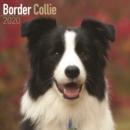 Image for Border Collie Calendar 2020