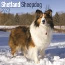 Image for Shetland Sheepdog Calendar 2020