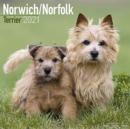 Image for Norwich Norfolk Terrier 2021 Wall Calendar