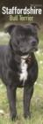 Image for Staffordshire Bull Terrier 2021 Slim Calendar