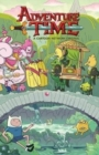 Image for Adventure timeVolume 15