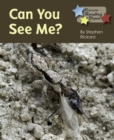 Image for Can You See Me.