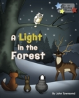 Image for A Light in the Forest.
