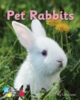 Image for Pet Rabbits