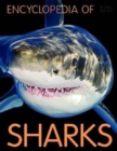 Image for Encyclopedia of Sharks