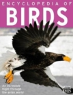 Image for Encyclopedia of Birds