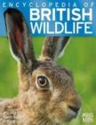 Image for Encyclopedia of British Wildlife