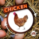 Image for Life cycle of a chicken
