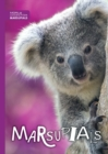 Image for Marsupials