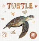 Image for Turtle