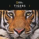 Image for Tigers National Geographic Square Wall Calendar 2020