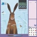 Image for Ailsa Black, RSPB Household Square Wall Planner Calendar 2020