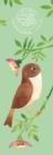Image for MATT SEWELLS BIRDS S 2020
