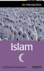 Image for Islam: an introduction