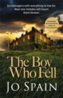 Image for The boy who fell