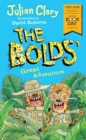 Image for The Bolds' great adventure