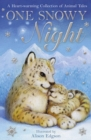 Image for One snowy night