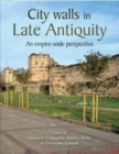 Image for City Walls in Late Antiquity : An Empire-wide Perspective