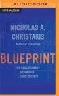 Image for Blueprint  : the evolutionary origins of a good society