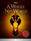 Image for Disney Princess Aladdin: A Whole New World