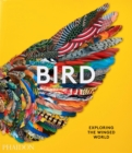 Image for Bird  : exploring the winged world