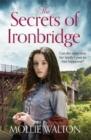 Image for The secrets of Ironbridge