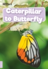 Image for Caterpillar to butterfly