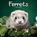 Image for Ferrets 2021 Wall Calendar