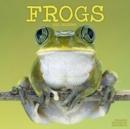 Image for Frogs 2021 Wall Calendar
