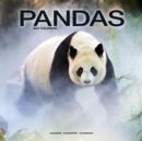 Image for Pandas 2021 Wall Calendar