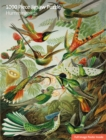 Image for Adult Sustainable Jigsaw Puzzle V&A: Humming Birds : 1000-pieces. Ethical, Sustainable, Earth-friendly.