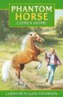 Image for Phantom horse comes home